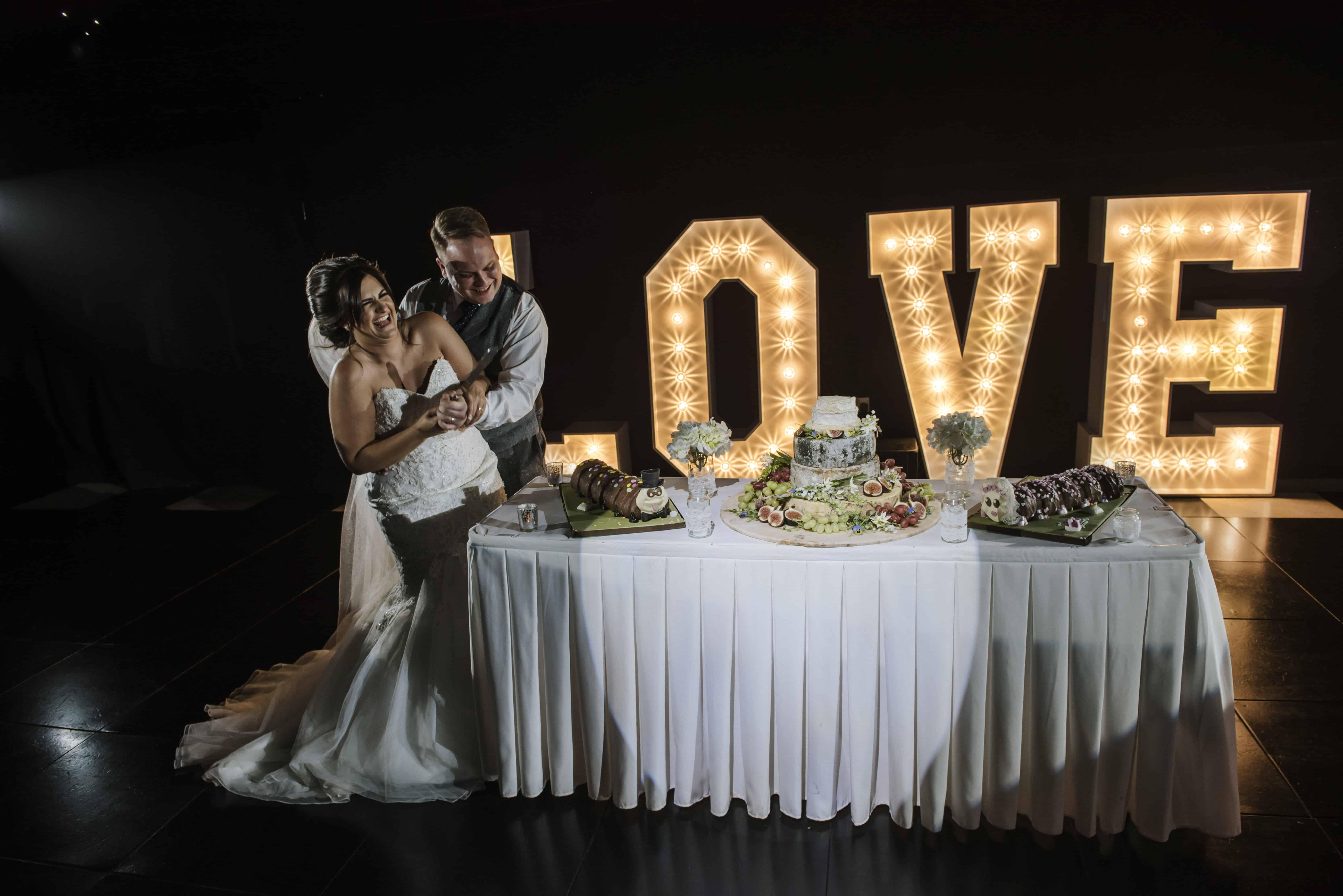 Bride & Groom cutting wedding cake Oldwalls Wedding Photographer